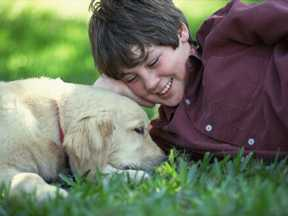 boy and dog relaxing on a beautiful lawn