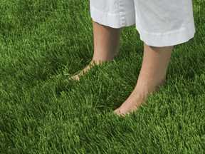 bare feet standing in grass