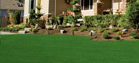 Image Of A Beautiful Green Lawn In Front House